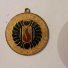 """PVM - Breloc / insigna jubiliara """"ICSITEE 1967 - 1987"""""""