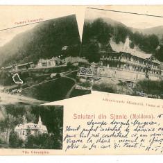 296 - L i t h o, Bacau, SLANIC MOLDOVA - old postcard - used - 1900, Circulata, Printata