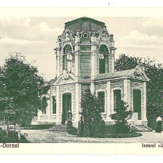 80 - Suceava, VATRA DORNEI, izvorul Unirea - old postcard - unused