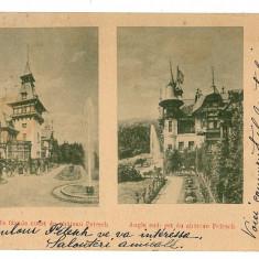 1770 - L i t h o, Prahova, SINAIA, Peles Castle - old postcard - used - 1900