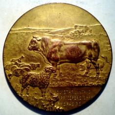 5.371 MEDALIE ROMANIA MINISTERUL AGRICULTUREI SI DOMENIILOR 1923 STEA C. CRISTESCU 59mm - Medalii Romania