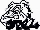 STICKER - DOG OPEL / COD - STANCE_108 / ORICE CULOARE / ORICE STICKER LA COMANDA