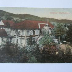 CARTE POSTALA GOVORA 1915