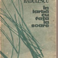 (C4989) IN IARBA CU FATA LA SOARE DE BANU RADULESCU, EDITURA CARTEA ROMANEASCA, 1989