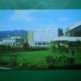 HOPCT 10155 ROMANIA -BAIA MARE / HOTEL GUTINUL