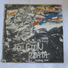 VINIL L.P. FORMATII ROCK 13 - Muzica Rock electrecord