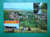 HOPCT 10309  ROMANIA SALISTE