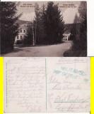 Vatra Dornei (Bucovina,Suceava)- Gradina -rara