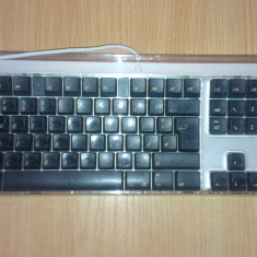 Tastatura Apple M7803 pe Usb, Cu fir