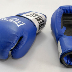 Everlast - Manusi de box Rodney 8 oz - pt antrenament - calitate excelenta - Noi - Manusi box