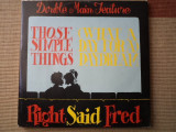 Right Said Fred those Simple Things What A Day For A Daydream maxi single vinyl