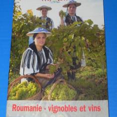 BROSURA ROMANIA - VII SI VINURI - TEXT IN FRANCEZA (00672
