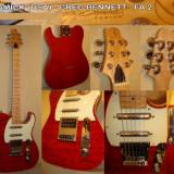 Chitara - Samick - Greg Bennett - Fa 2 Us Edition