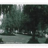 1897 - SATU-MARE, Strandul - old postcard, real PHOTO - unused