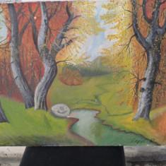 pictura in ulei pe pinza ,de pictor maghiar Arpad  Racz REDUCERE