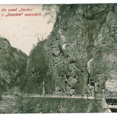 1910 - Gorj, Pasul SURDUC, bridge - old postcard - used - 1929 - Carte Postala Oltenia 1904-1918, Circulata, Printata