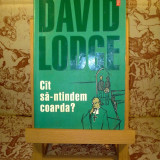 David Lodge - Cit sa-ntindem coarda?