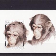 GAMBIA 1996 MAIMUTE CIMPANZEI - Timbre straine