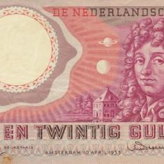OLANDA 25 gulden 1955 VF+++!!!