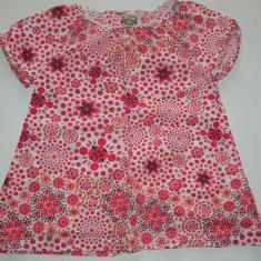 Camasa, camasuta pentru fetite, marca In Extenso, 3 ani, Culoare: Din imagine
