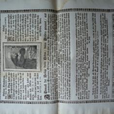 Pliant religios de secol 17 , Sfantul Francisc , de dimensiuni mari , tiparit pe hartie textila , 1