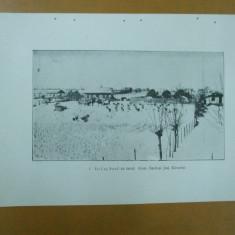 Stupi albine albinarit comuna Barbosi Covurlui azi Galati 1926 - Carte Postala Moldova dupa 1918