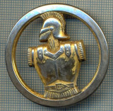 1826 INSIGNA - MILITARA - LEGIUNEA STRAINA  -starea care se vede
