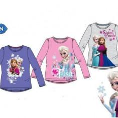 Bluza fetite Disney Frozen, M, XL, XS, Bleumarin, Gri, Roz, Fete