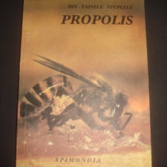 DIN TAINELE STUPULUI - PROPOLIS
