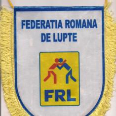 Fanion-FEDERATIA ROMANA DE LUPTE 2011 - Fanion fotbal
