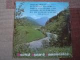 "muzica usoara romaneasca disc vinyl 10"" muzica pop usoara slagare anii 60"