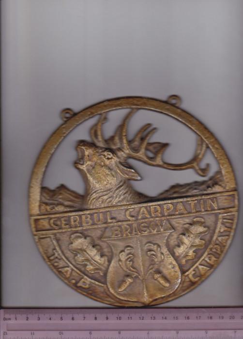 bnk dv Emblema metalica dimensiuni mari - Cerbul Carpatin Brasov - TAP Carpati