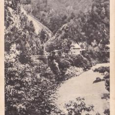 CARTE POSTALA Salutari din Gorj - Defileul Jiului Necirculata - Carte Postala Oltenia dupa 1918, Targu Jiu, Printata