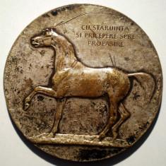 5.162 MEDALIE ROMANIA MINISTERUL AGRICULTUREI SI DOMENIILOR CAL EXPOZITIA ZOOTECHNICA JUDETEANA 1925 CRISTESCU 60mm ARGINTATA - Medalii Romania
