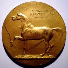 5.164 MEDALIE ROMANIA MINISTERUL AGRICULTUREI SI DOMENIILOR CAL EXPOZITIA ZOOTECHNICA JUDETEANA 60mm AURITA - Medalii Romania