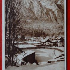 Carte postala - Busteni - Peisaj de iarna - Carte Postala Banat dupa 1918