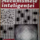 Mecanismele Inteligentei - Mariana Belis ,287490