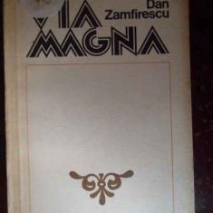 Via Magna - Dan Zamfirescu, 300167 - Biografie