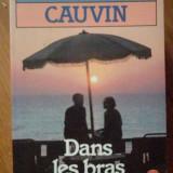 Dans Les Bras Du Vent - Patrick Cauvin ,304848