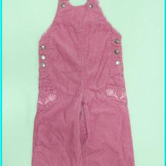 Salopeta catifea reiata, captusita, IMPIDIMPI _ fete | 9 - 12 luni, Marime: Alta, Culoare: Roz