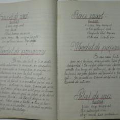 RARITATE - VECHI MANUSCRIS CARE ASTEAPTA LUMINA TIPARULUI - SUTE DE RETETE DE BUCATE - SCOLILE DE MENAJ PERIOADA INTERBELICA - CALIGRAFIE DE EXCEPTIE - Carte Editie princeps