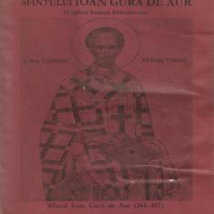 ISTORIA SFANTULUI IOAN GURA DE AUR ( ORADEA, 2003, 867 p. )