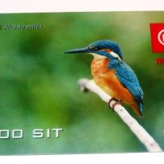 Cartela telefonica - FAUNA - PASARI - PASARE - SLOVENIA - 2+1 gratis toate produsele la pret fix - CHA1103 - Cartela telefonica straina