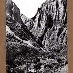 TURDA CABANA CHEILE TURZII 1963 - Carte Postala Transilvania dupa 1918, Circulata