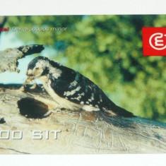 Cartela telefonica - FAUNA - PASARI - PASARE - SLOVENIA - 2+1 gratis toate produsele la pret fix - CHA1104 - Cartela telefonica straina