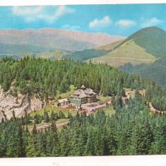 @carte postala(marca fixa) - SUCEAVA -Cabana Rarau - Carte Postala Moldova dupa 1918, Circulata, Printata