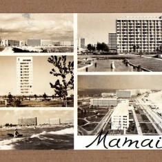 MAMAIA 1966