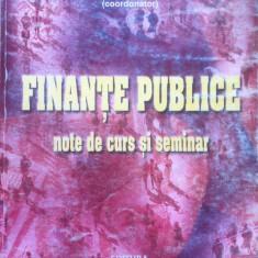 FINANTE PUBLICE NOTE DE CURS SI SEMINAR - Tatiana Mosteanu