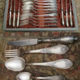 Caseta de tacamuri argintate, pentru 6 persoane