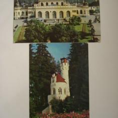 Vederi - VATRA DORNEI